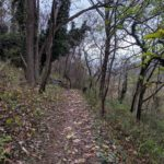 Guided hikes for inspiration